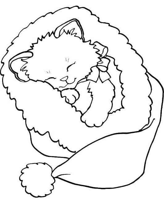 Раскраска Спящий Котенок