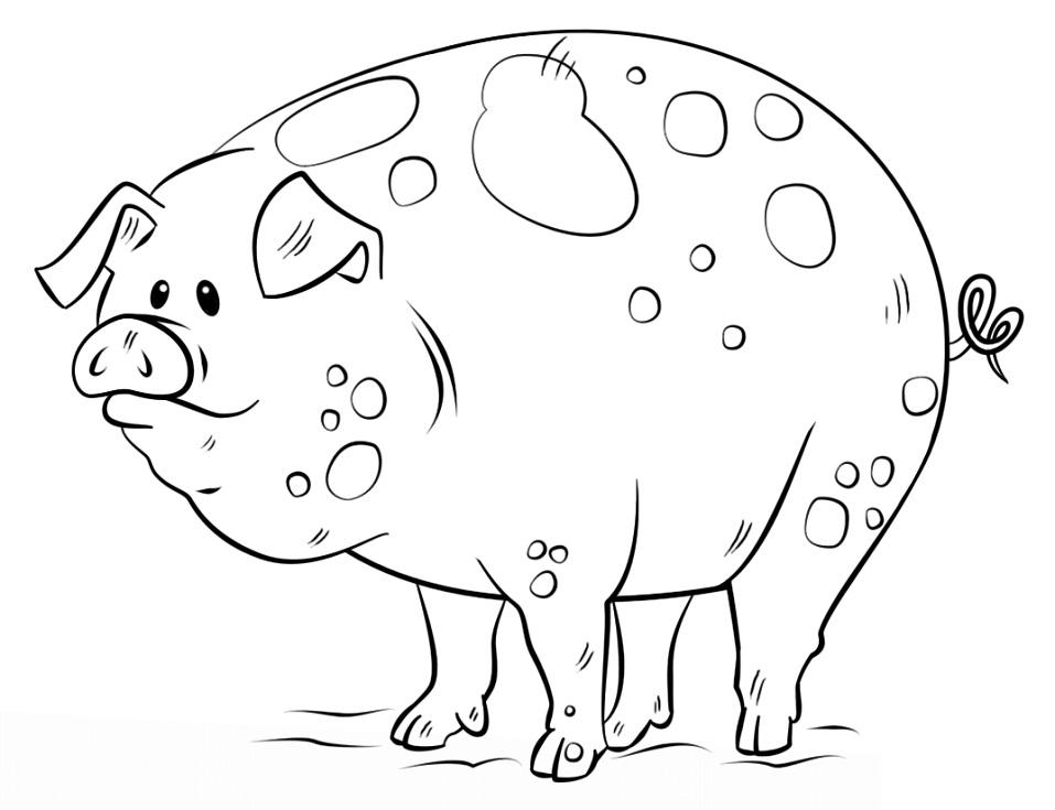 Раскраска Мультяшная свинка