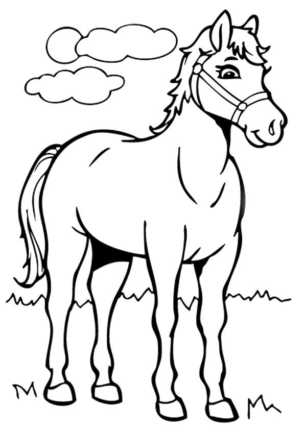 Раскраска Лошадь на лугу