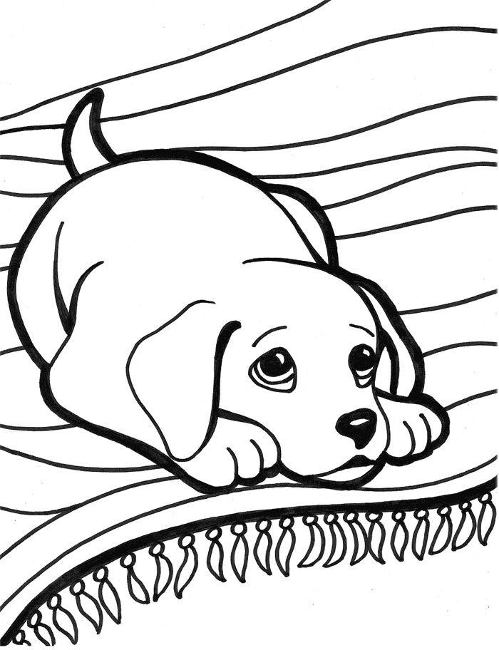 Раскраска Собака лежит на ковре