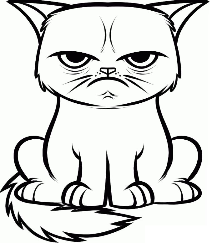 Раскраска Кот злится