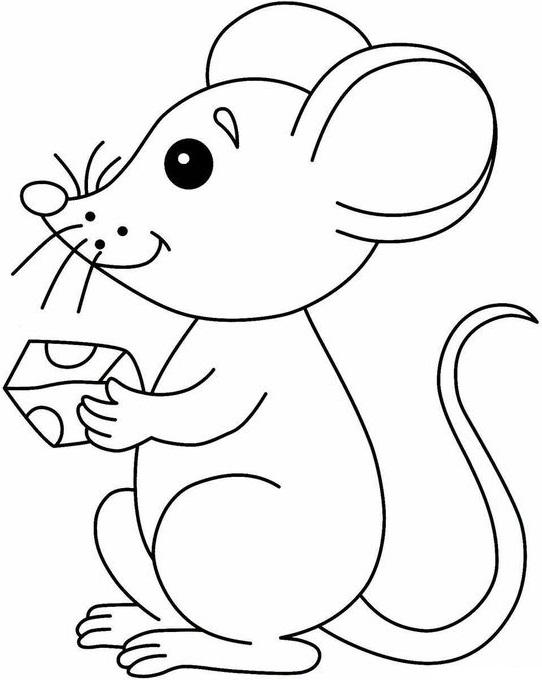Раскраска Мышь держит сыр