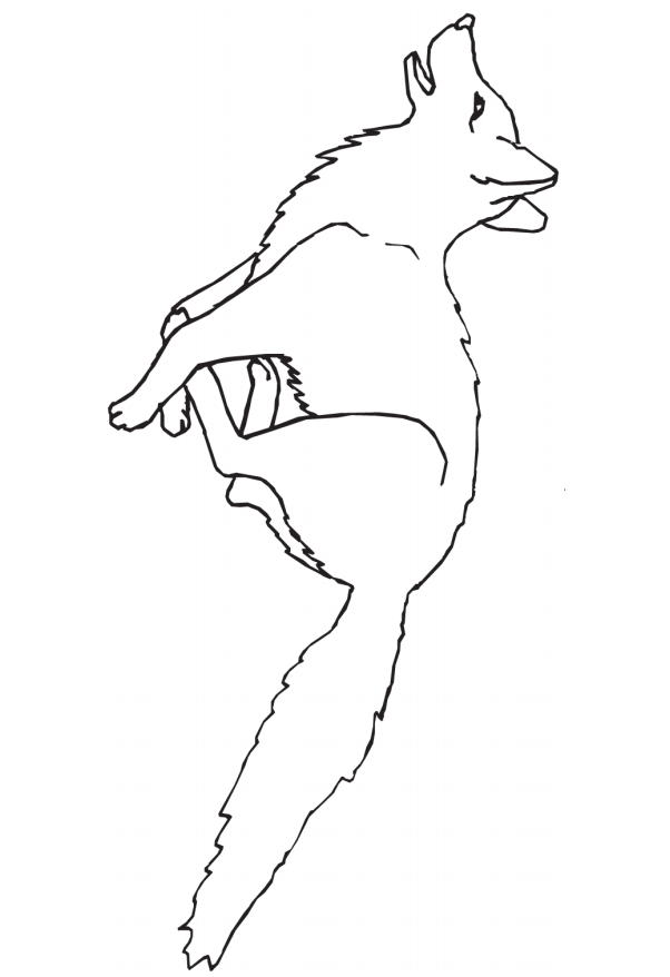 Раскраска Лиса бежит