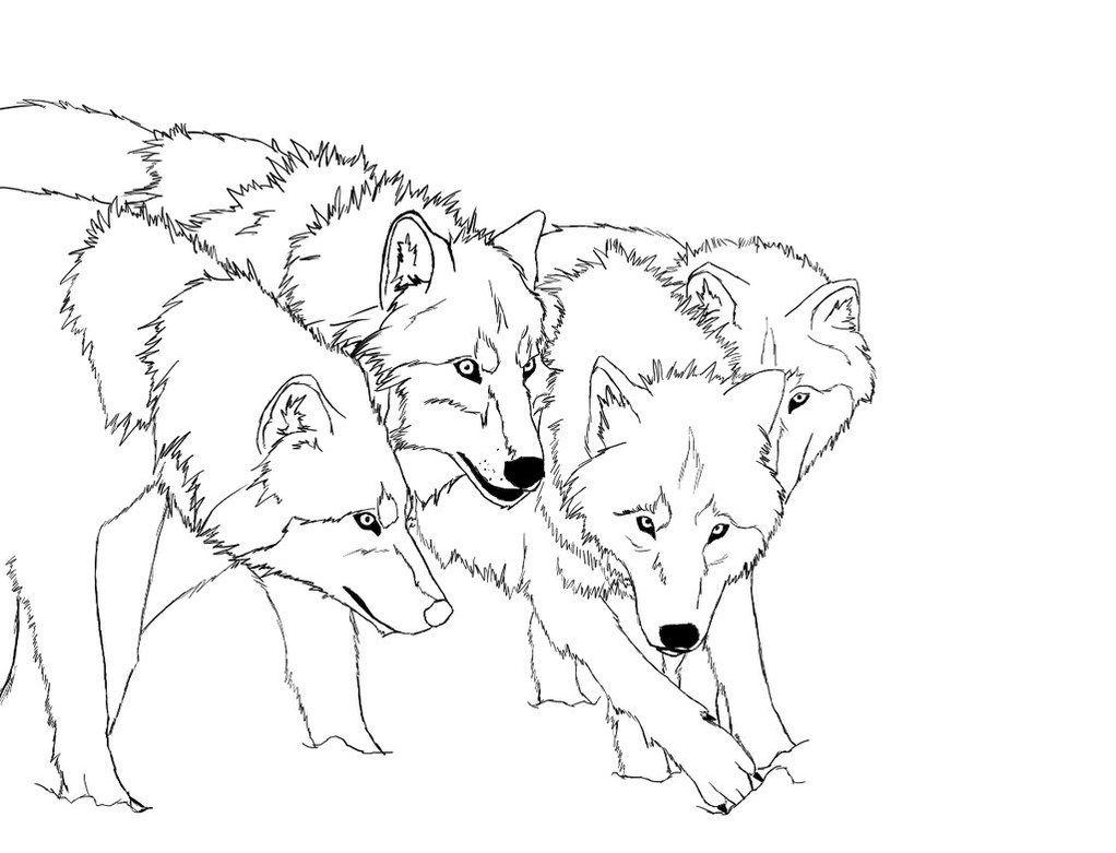 Раскраска стая волков