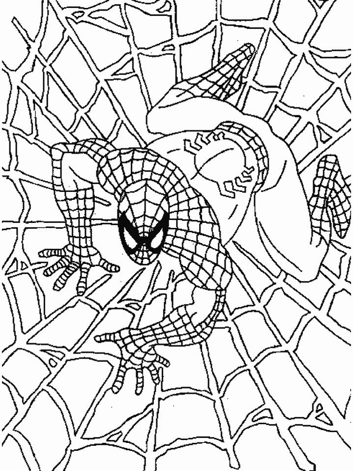 Раскраска Раскраски человек-паук