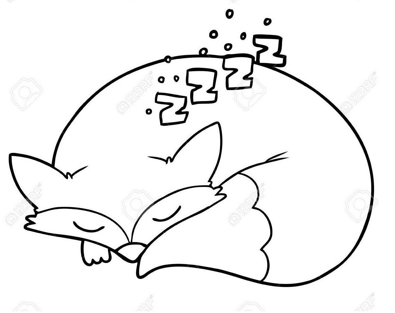 Раскраска Лиса спит