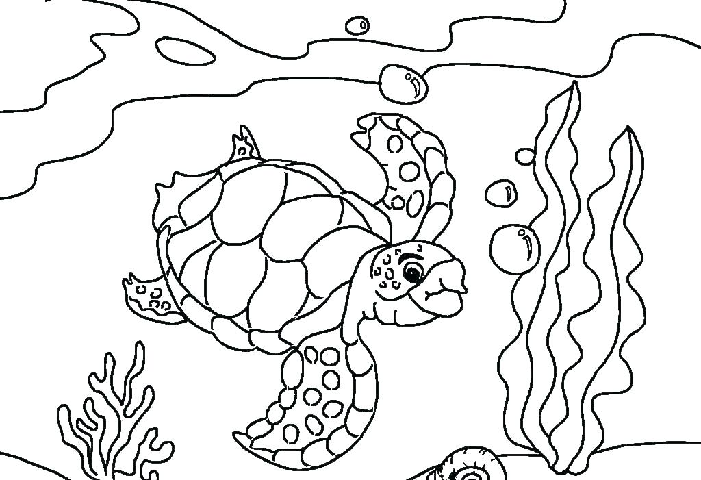 Раскраска черепаха большие губы