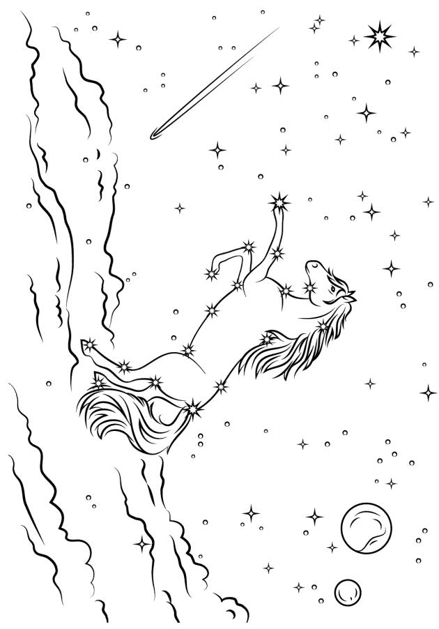 Раскраска Белла лошадь в ночи