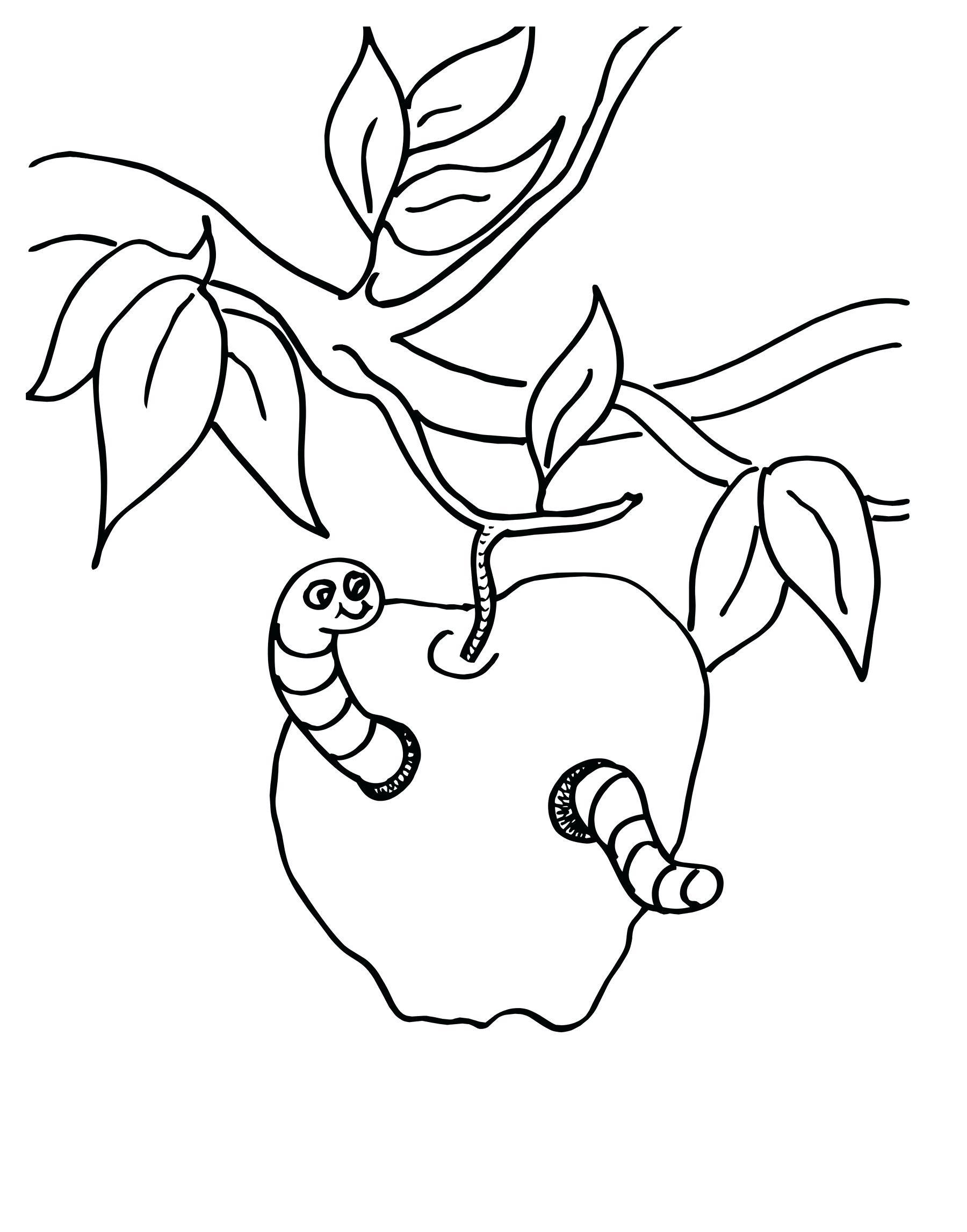 Раскраска червь в яблоке