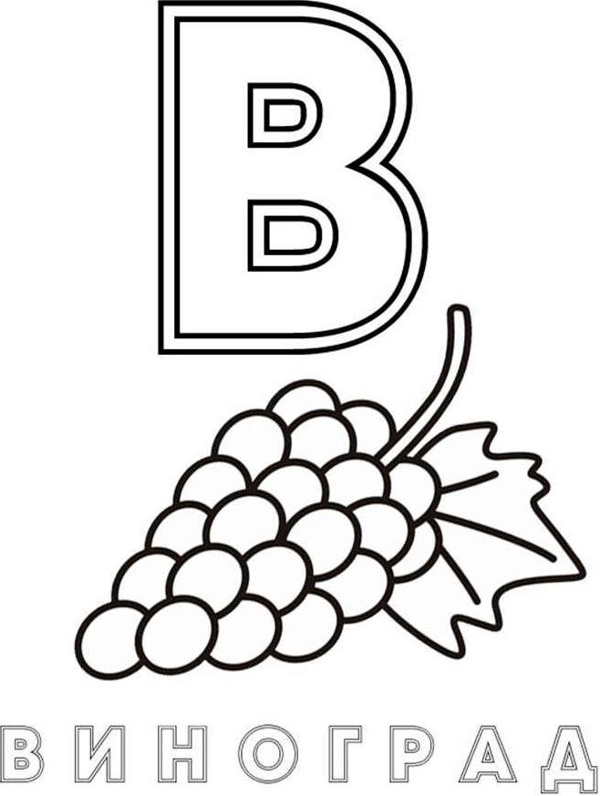 Раскраска Буква B