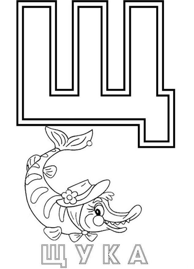 Раскраска Буква Щ Для Щука