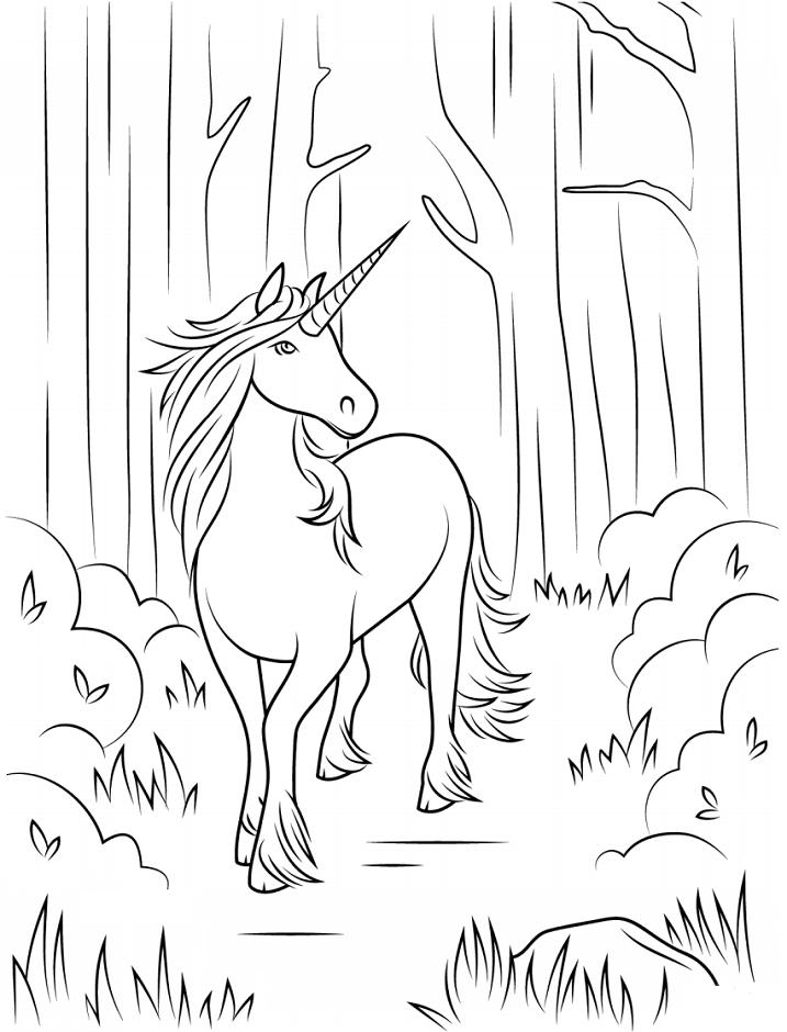 Раскраска Единорог в джунглях