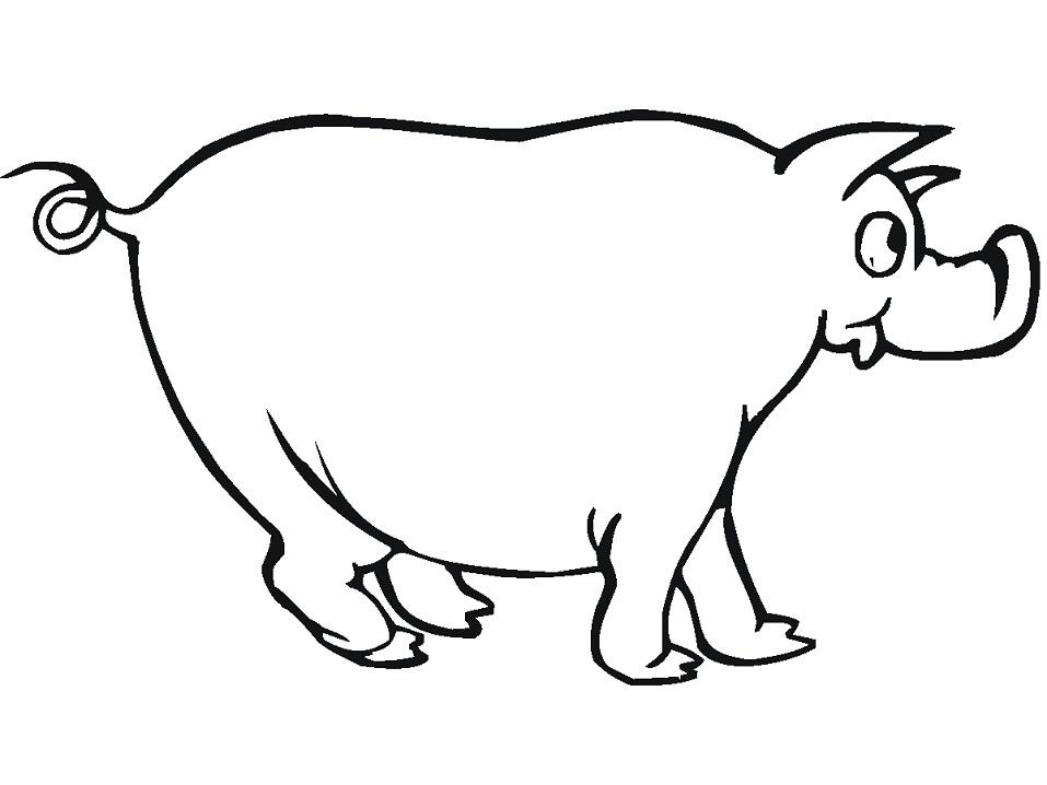 Раскраска Забавная свинка