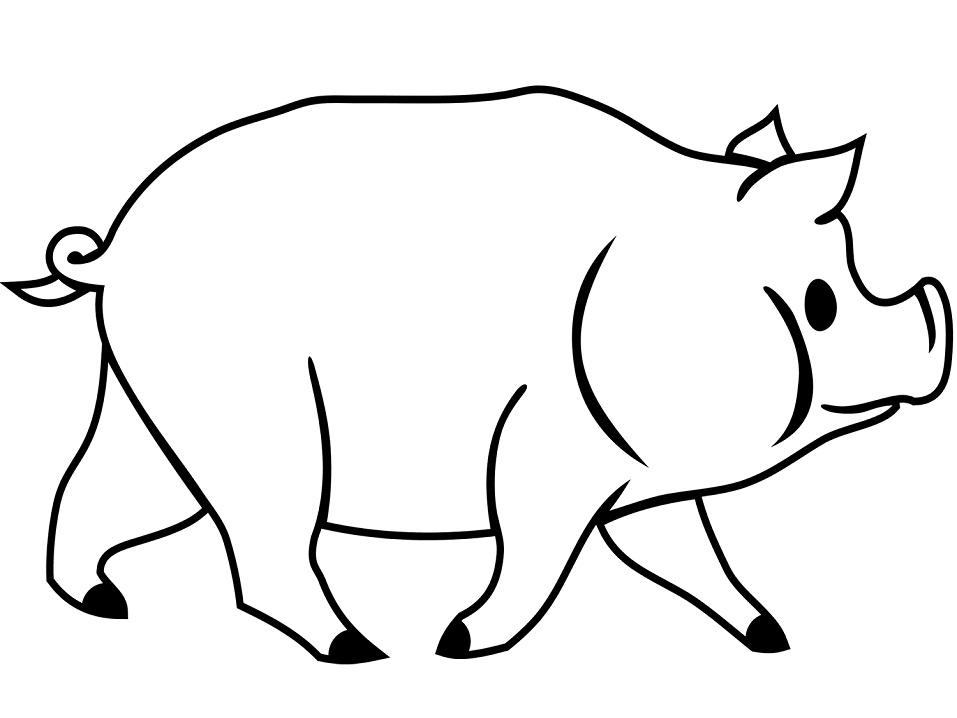Раскраска Раскраски свинья