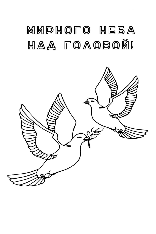 Раскраска 23 февраля - Мирного неба над головой