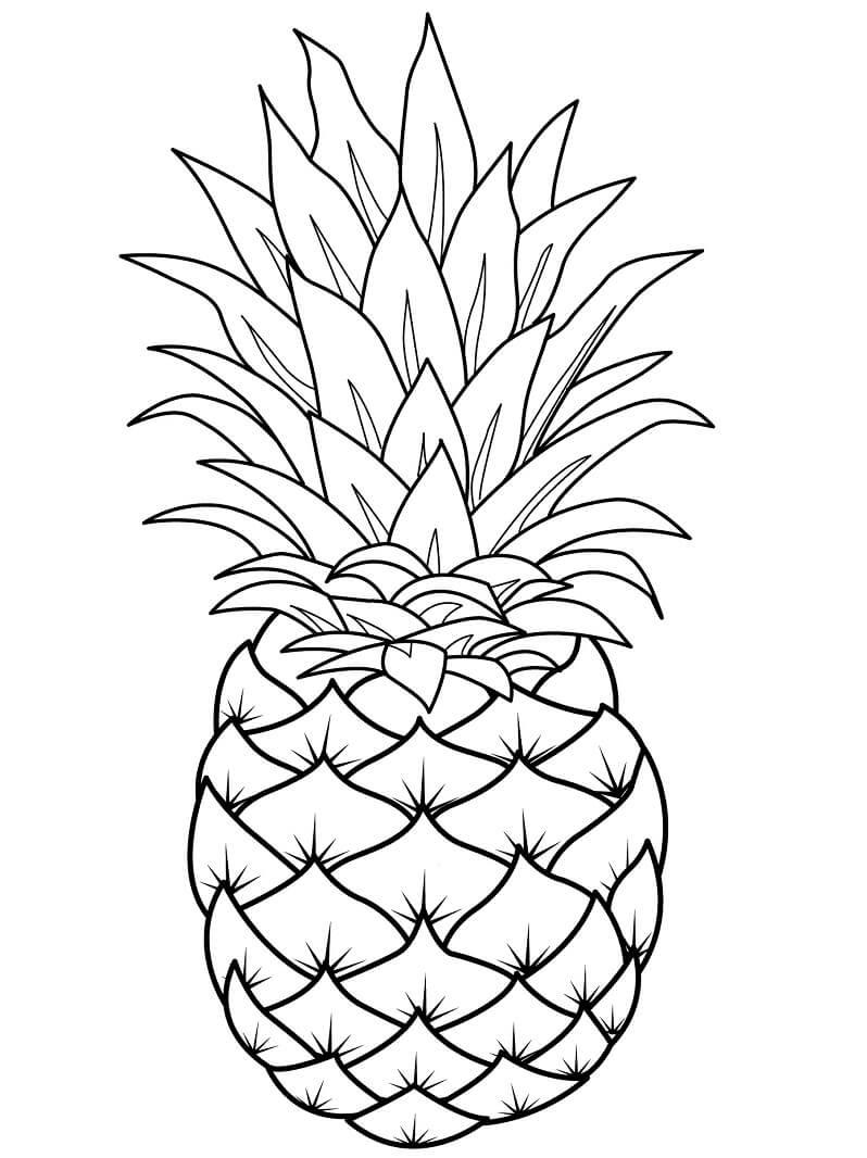 Раскраска ананас 2