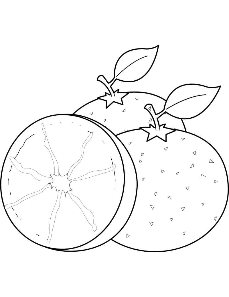 Раскраска Апельсины фрукты