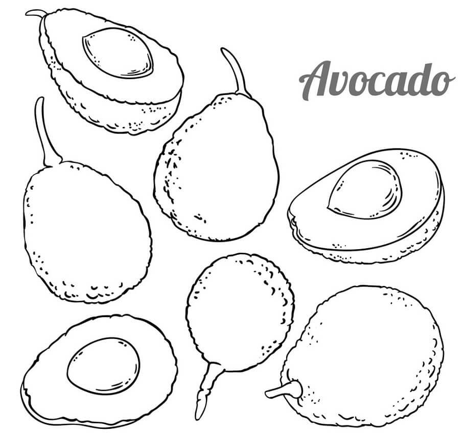 Раскраска Авокадо 11