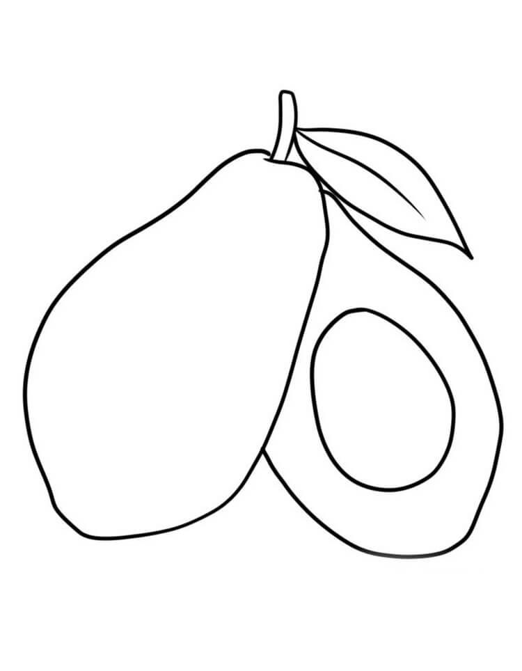 Раскраска Авокадо 5