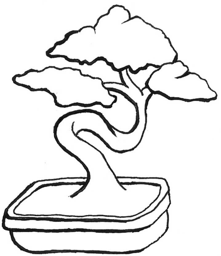 Раскраска бонсай дерево 3