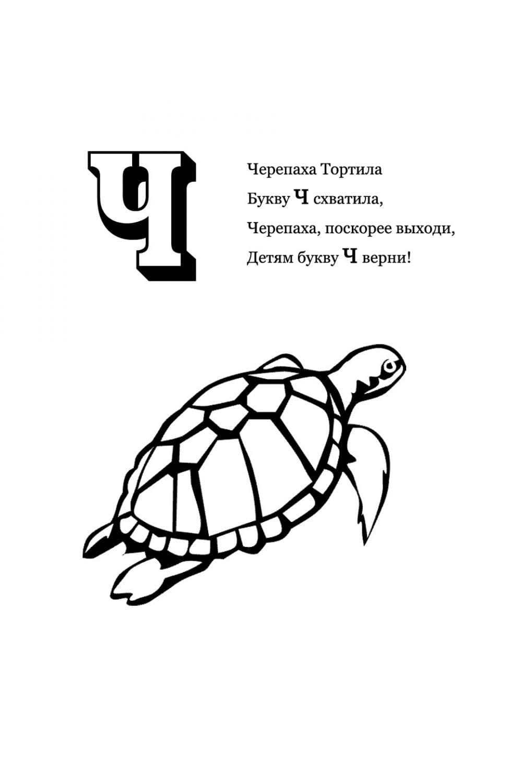 Раскраска Буква Ч - Черепаха