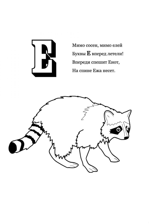Раскраска Буква Е - Енот