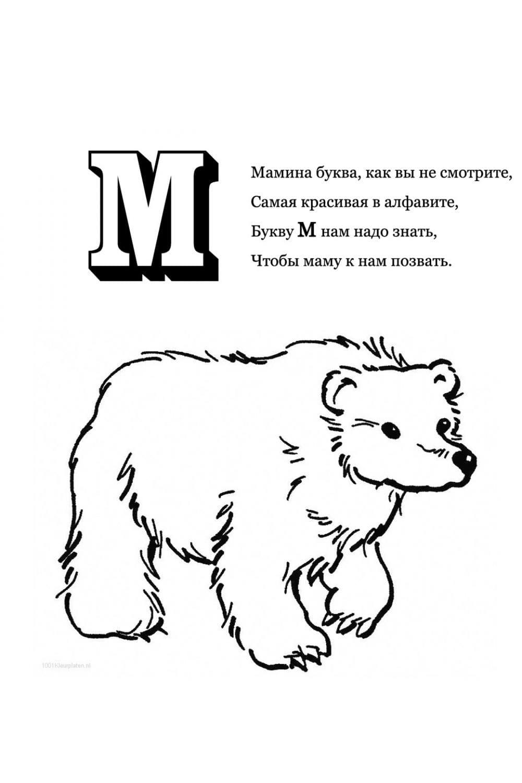 Раскраска Буква М - Медведь