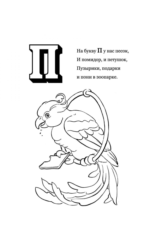 Раскраска Буква П - Попугай
