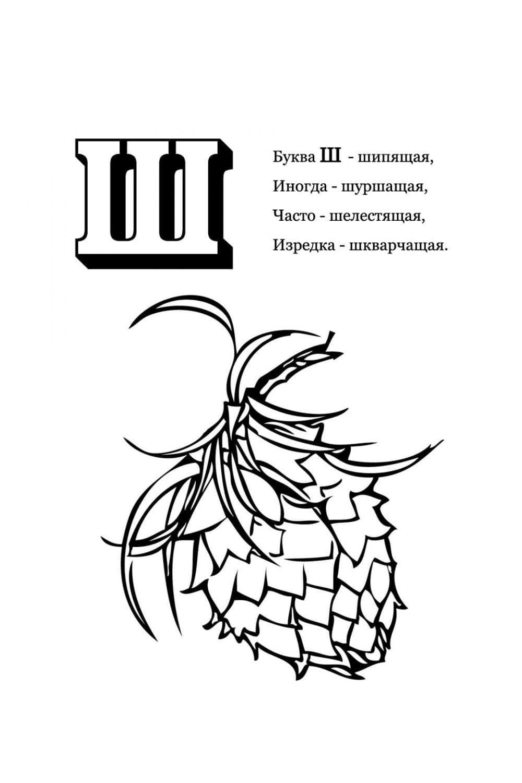 Раскраска Буква Ш - Шишка