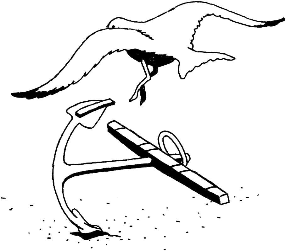 Раскраска чайка и якорь