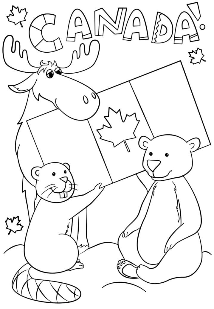 Раскраска День Канады 2