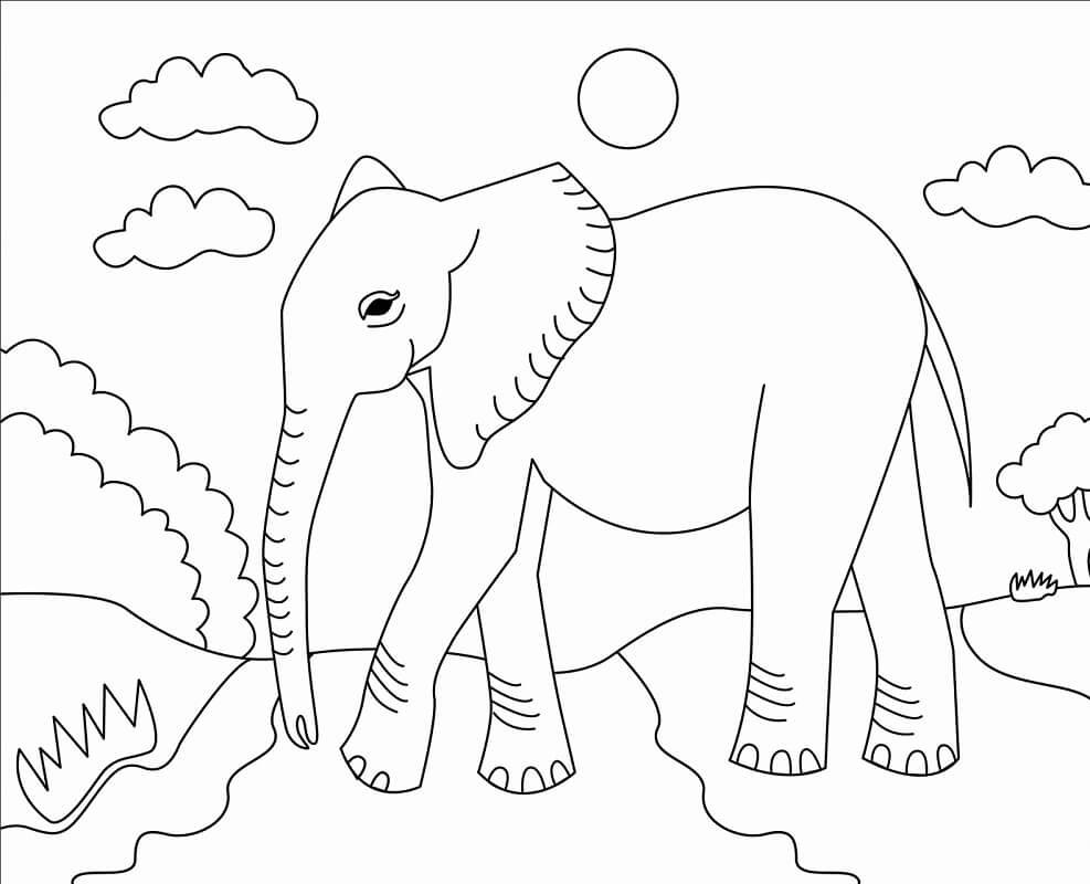Раскраска дикий слон