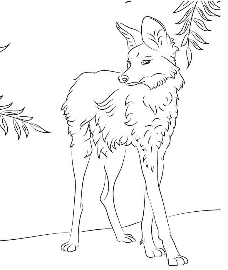 Раскраска дикий волк 14
