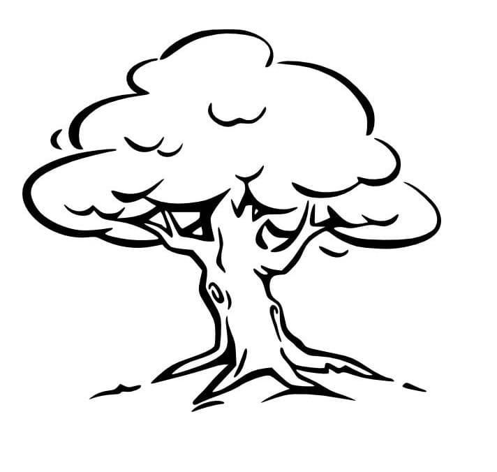Раскраска Раскраска дерево