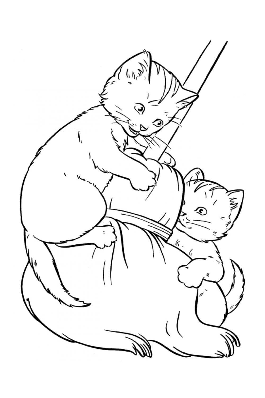 Раскраска Два котенка играют с метлой