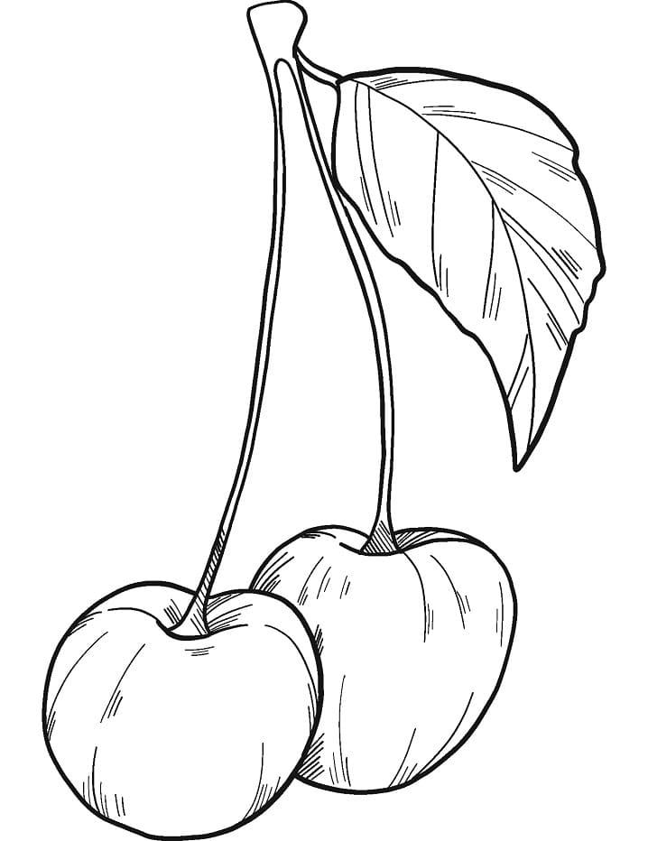 Раскраска две вишни 11