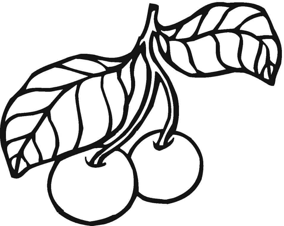 Раскраска две вишни 3