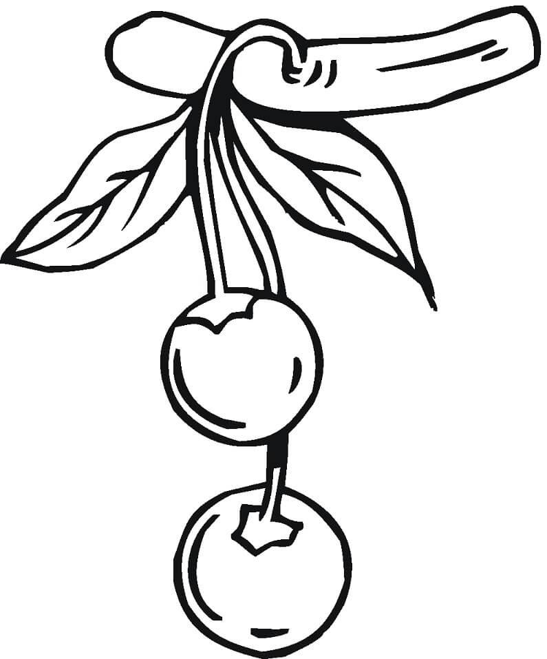Раскраска две вишни 5