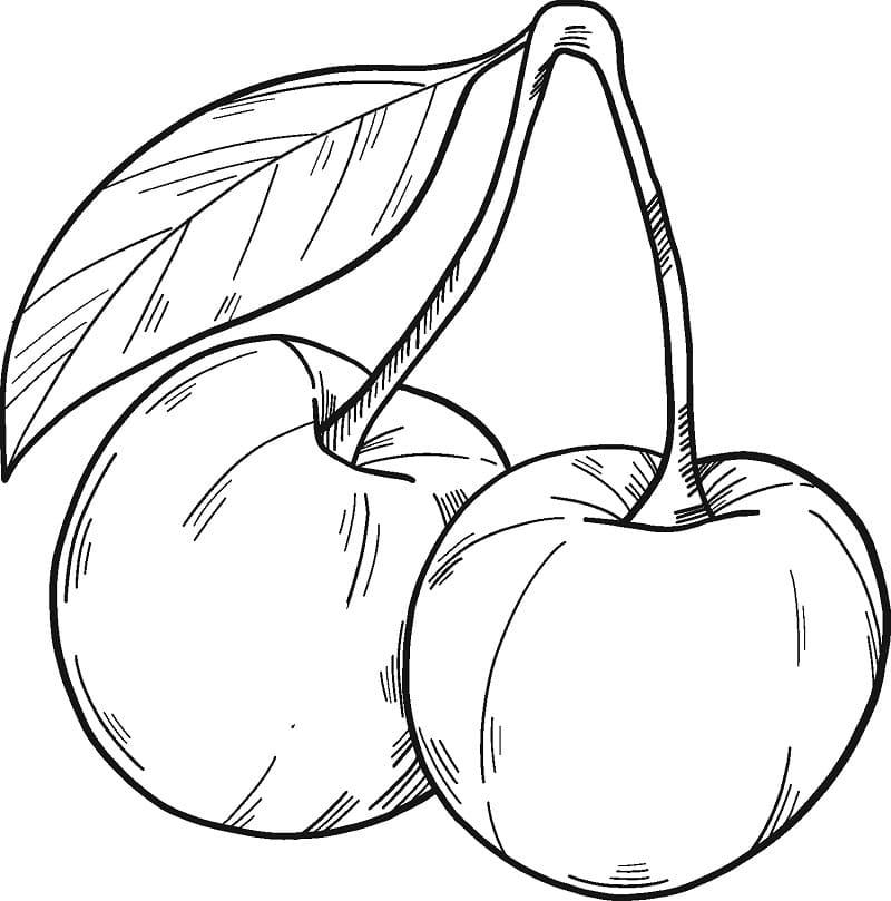 Раскраска две вишни 8