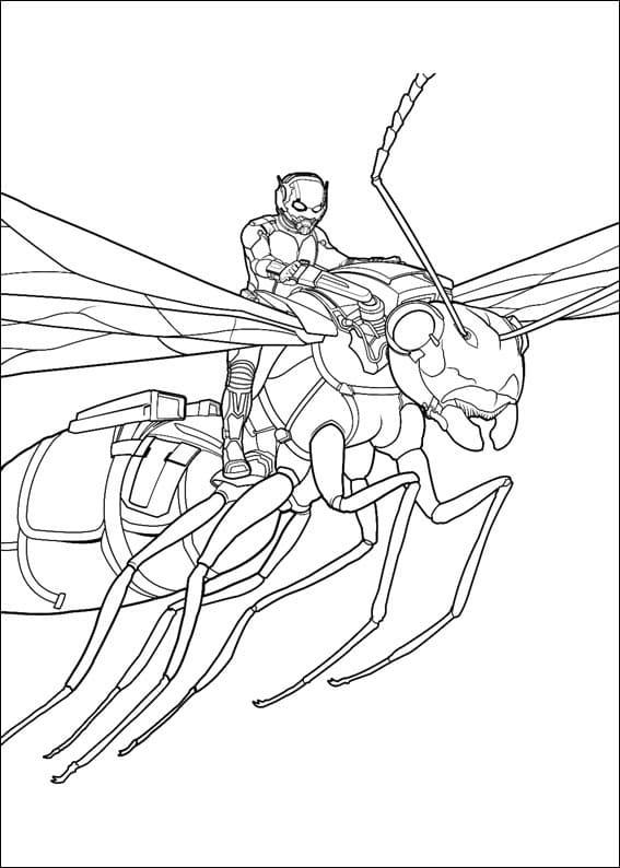 Раскраска фантастический Человек-муравей 1