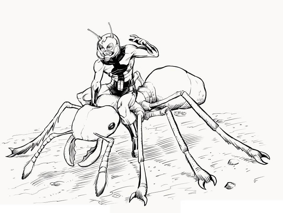 Раскраска герой Человек-муравей 4