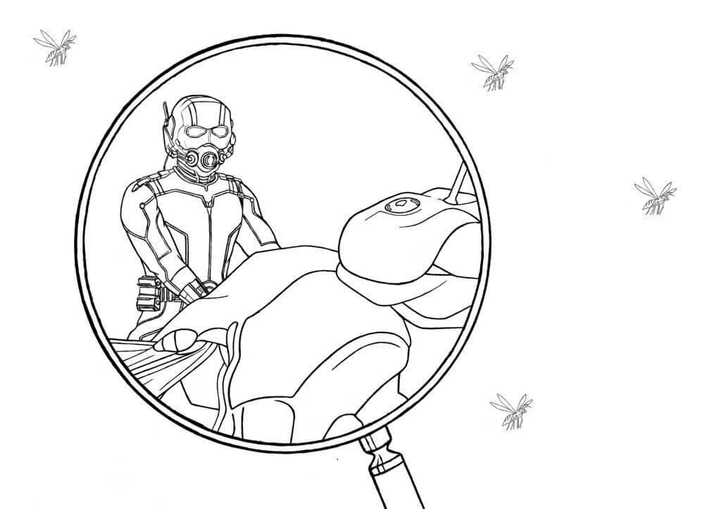 Раскраска герой Человек-муравей