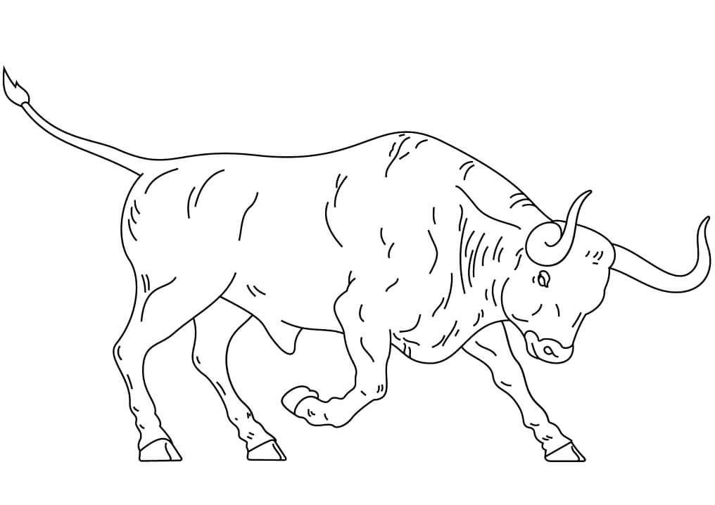 Раскраска Испанский бизон