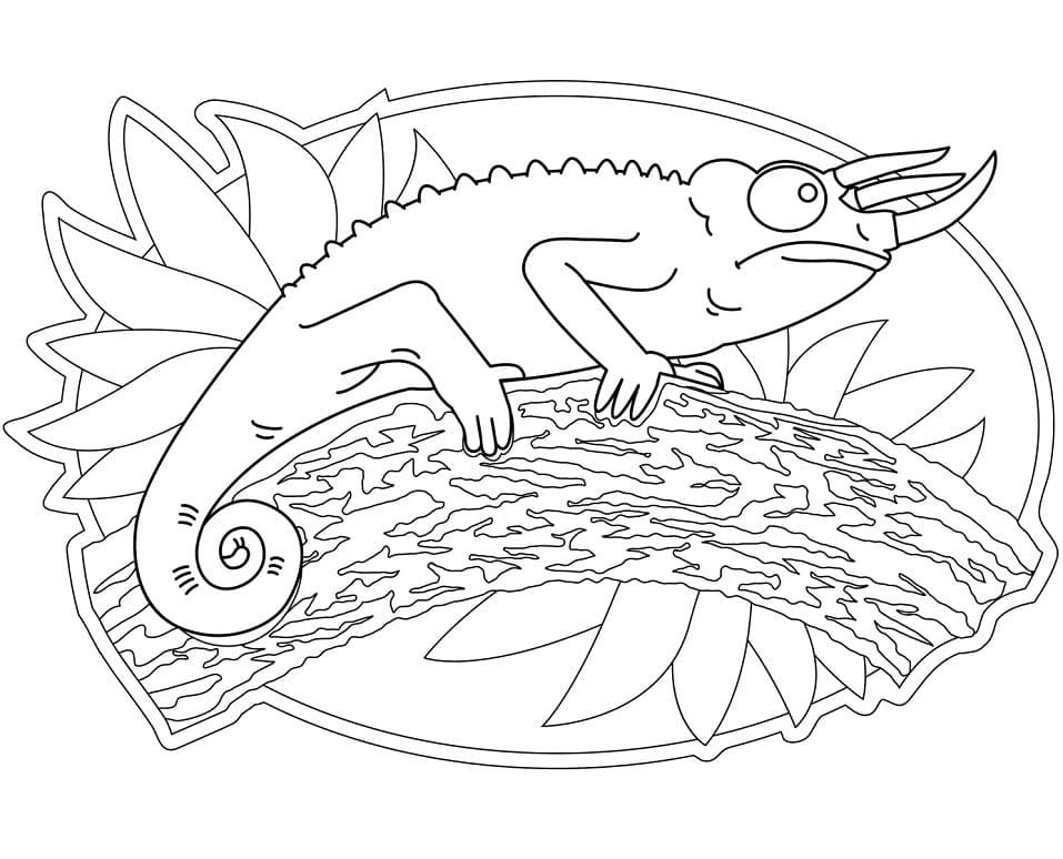 Раскраска Хамелеон 8