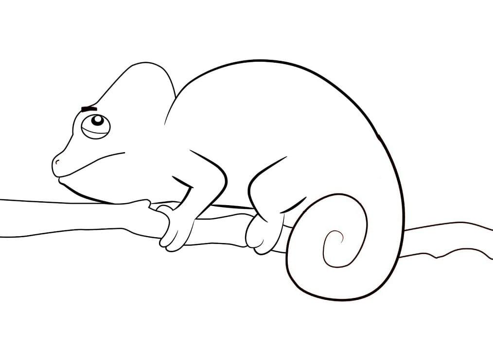 Раскраска хамелеон на ветке 1