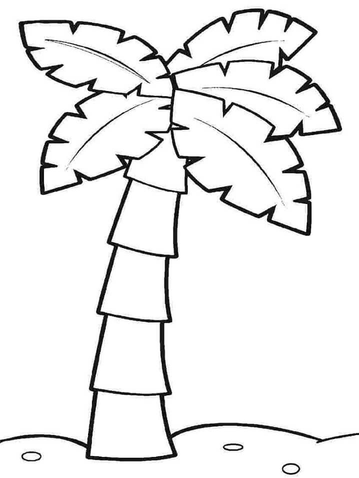 Раскраска кокосовое дерево 4