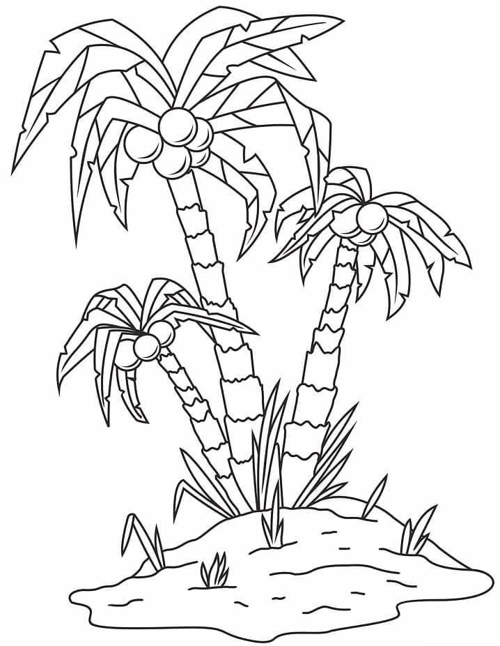 Раскраска кокосовое дерево 5