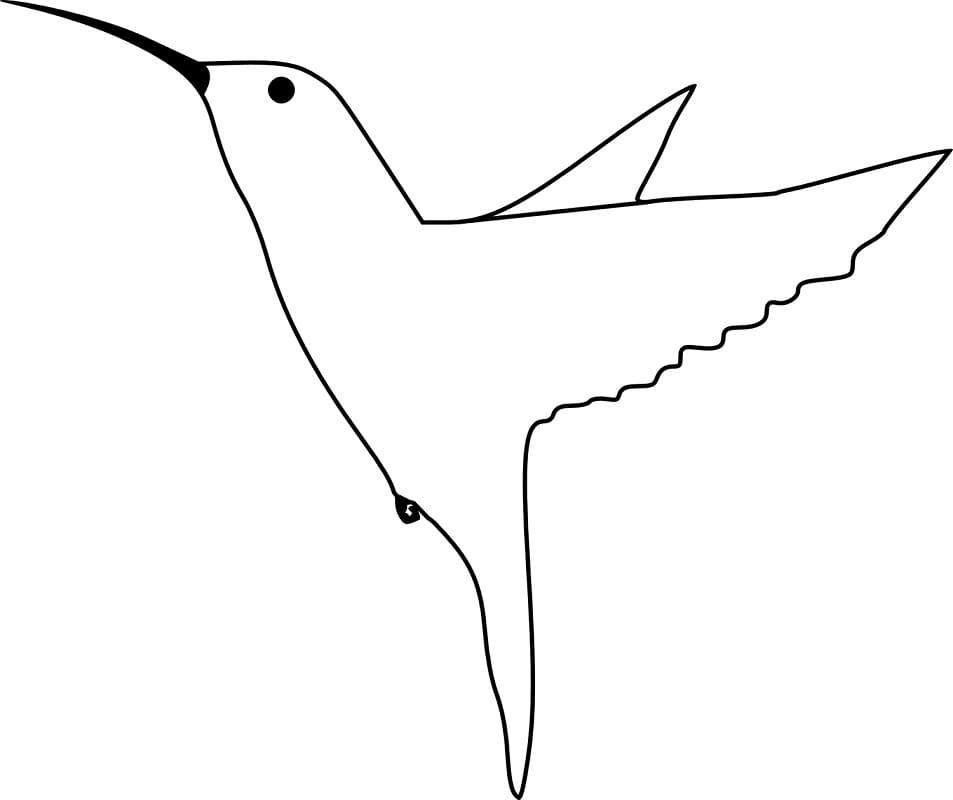 Раскраска Колибри 3