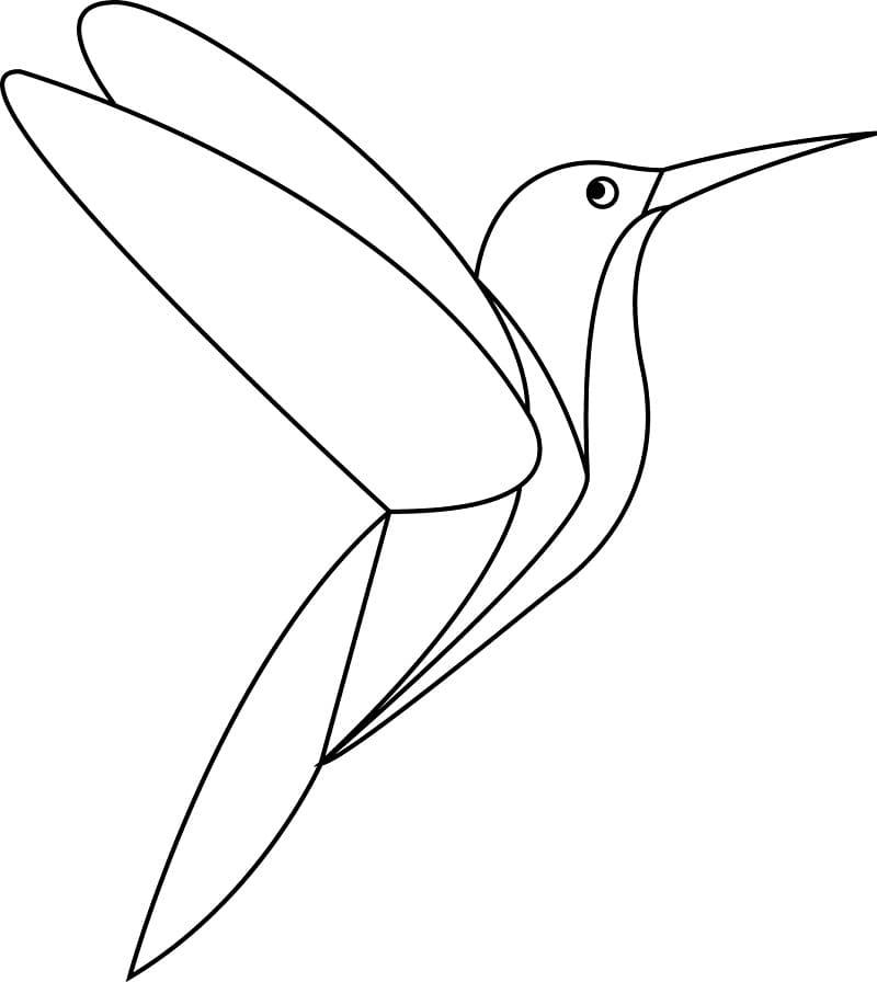 Раскраска колибри летит 3