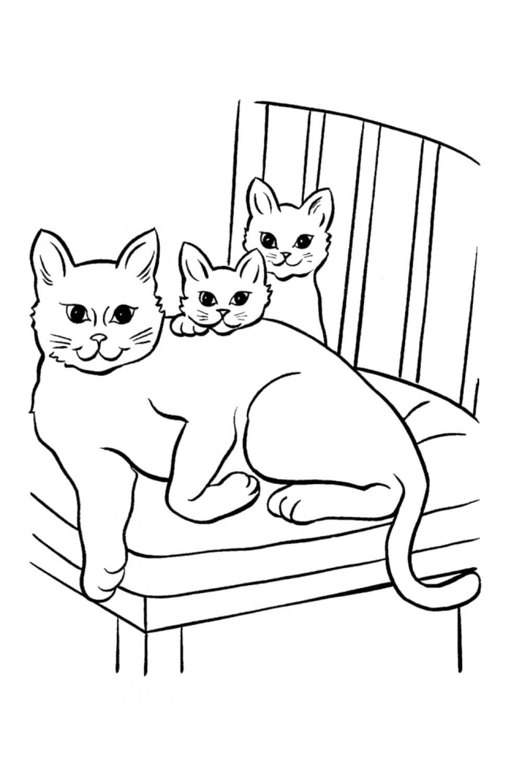 Раскраска Кошка и два котенка